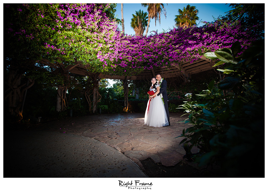 Hale Koa Hotel Wedding Photographer Luau garden