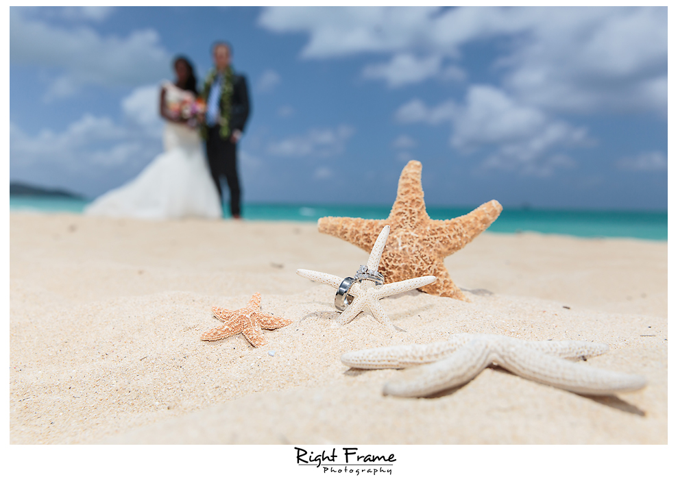 029_Hawaii Destination Wedding