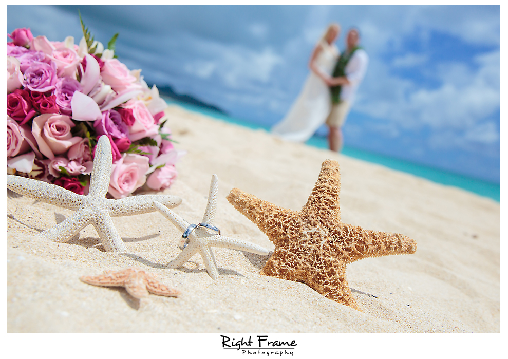 212_Hawaii Beach Wedding