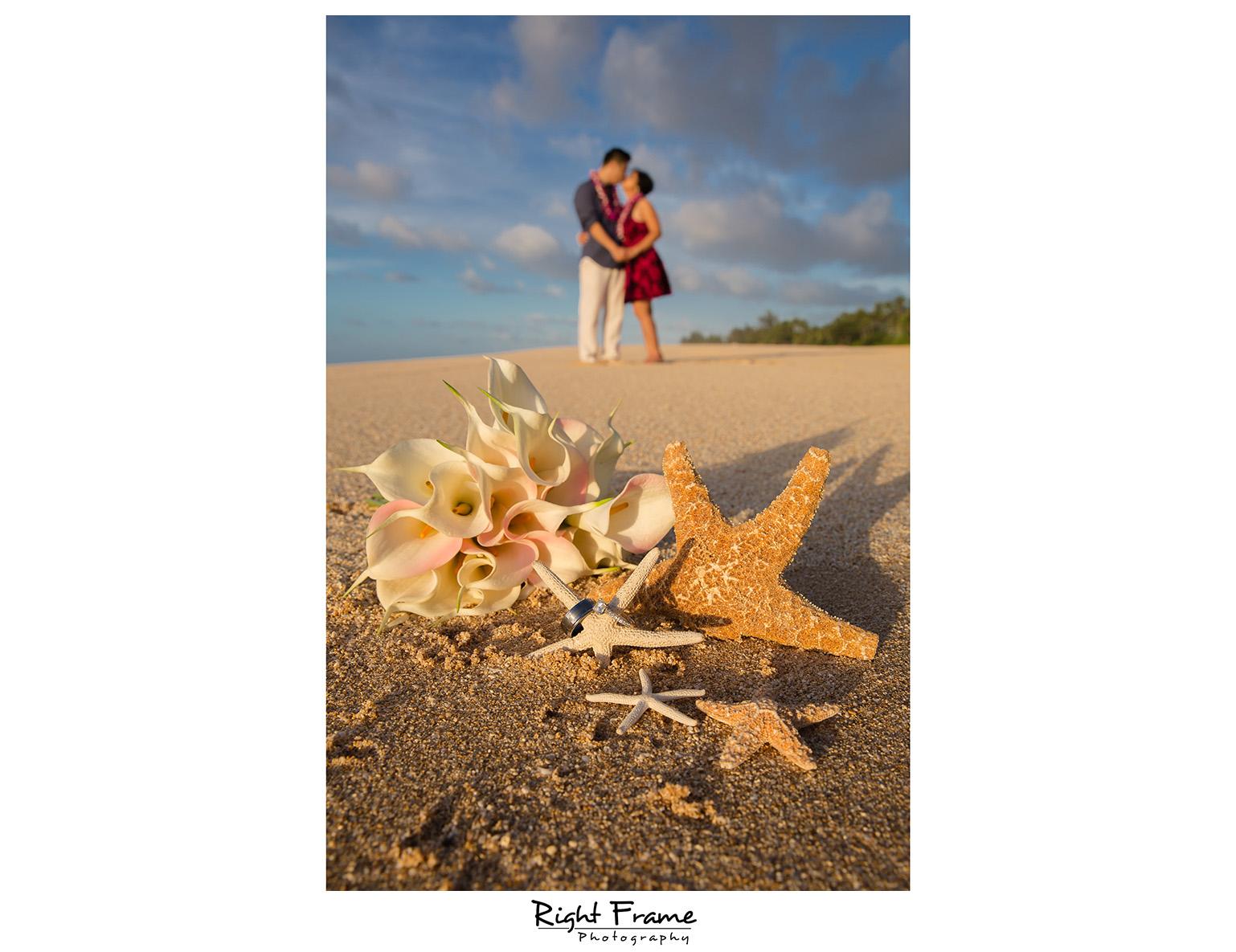 sunset engagement photographer near turtle beach resort oahu