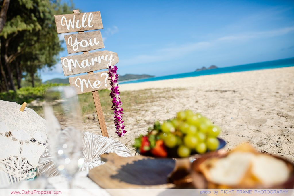 HAWAII PROPOSAL PHOTOGRAPHER BEACH PICNIC PROPOSAL