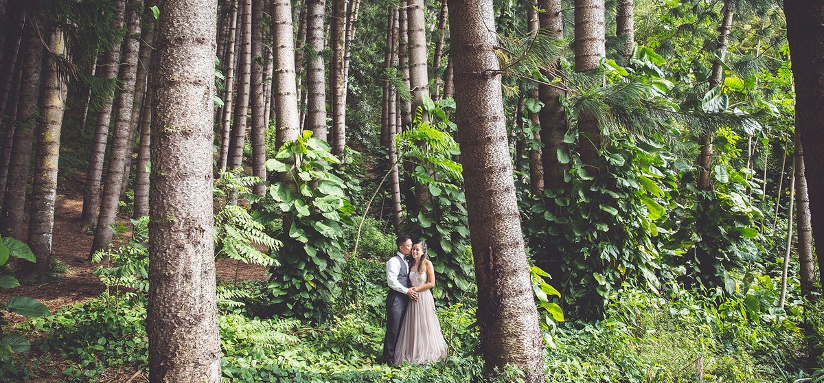 Couple Engagement Photographer Honolulu Tantalus Lookout Forest Jungle